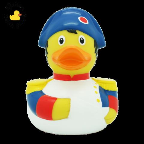Napoleon Duck